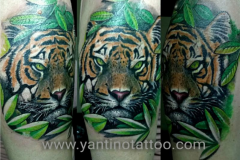 tiger-black-grey-tattoo-ubud-bali-realistic-kuta-macan